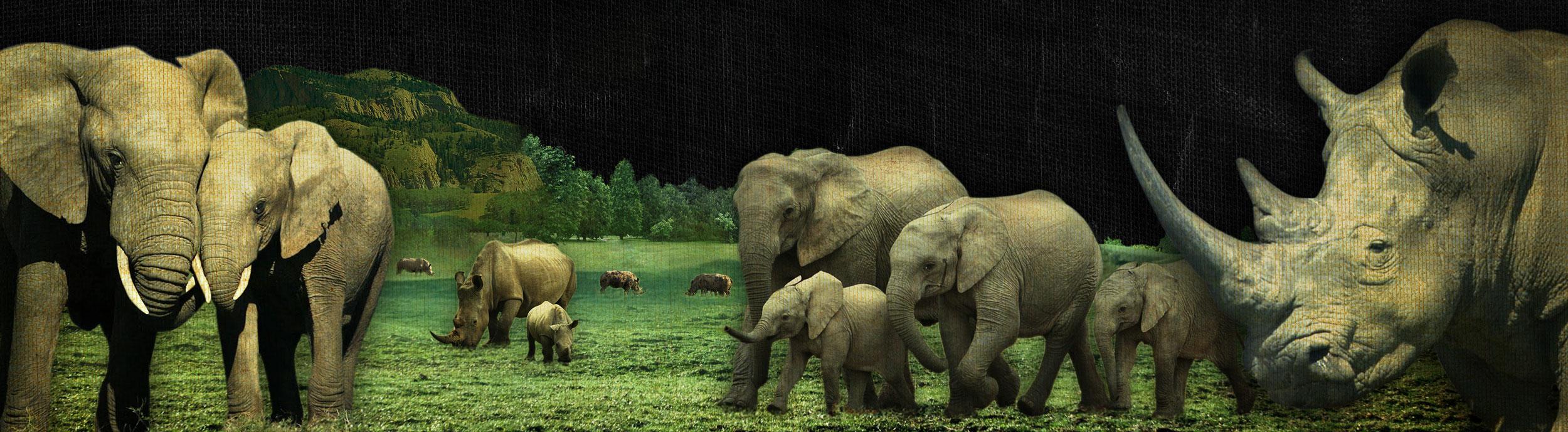 ElephantRhinoXXL